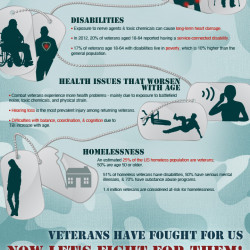 Common Health Issues Veterans Face | Visual ly