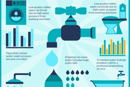 Common Plumbing Problems That Waste Water Infographic