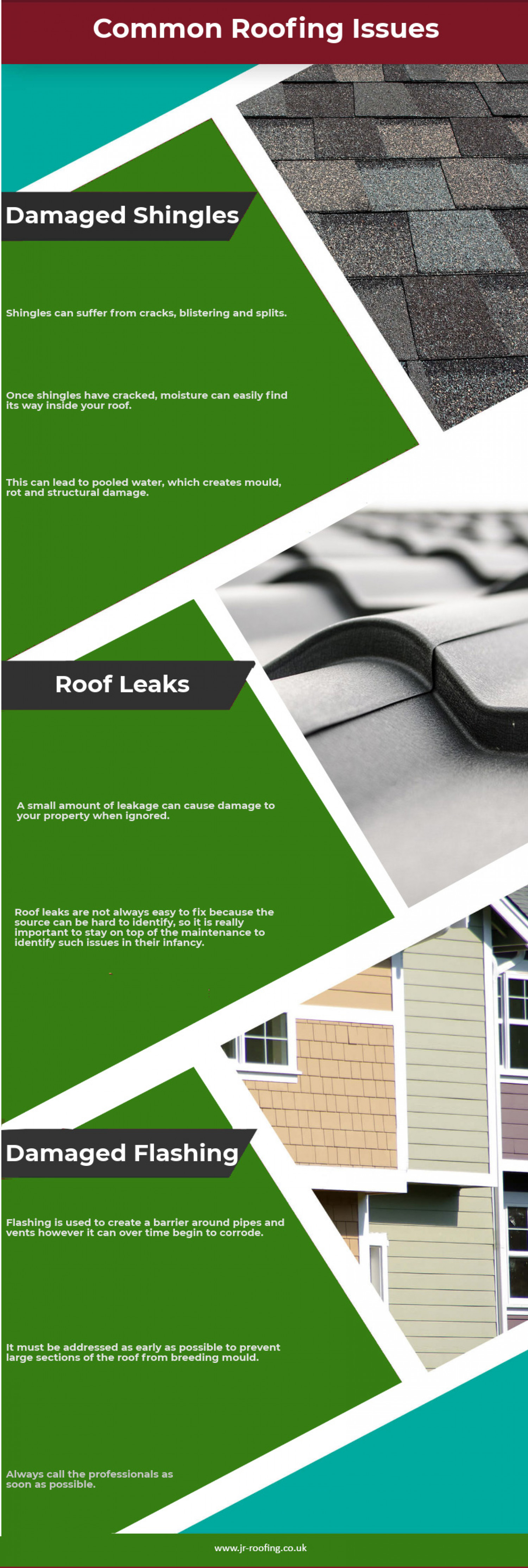 Common Roofing Issues Infographic