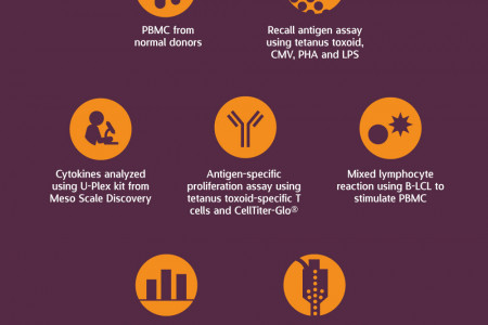 Comparison of Culture Media for In Vitro T Cell Expansion and Function Infographic