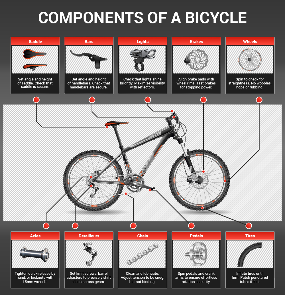 Components Of A Bike