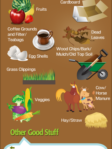 Composting 101 -- What's in, What's out? Infographic
