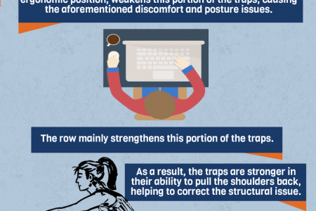 Compound Row: A Desk Worker's Best Friend | INFOGRAPHIC Infographic