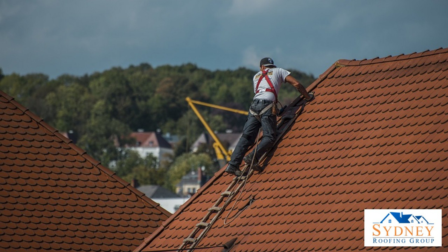 Concrete Roofing Experts in Sydney - Sydney Roofing Group Infographic