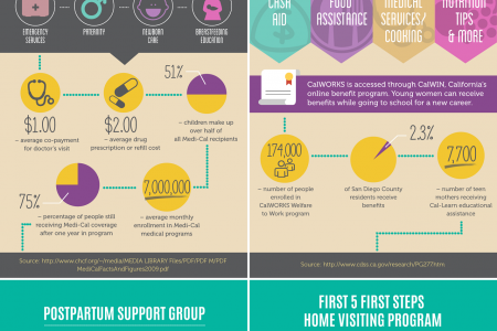 Continuing Education and Support Programs for Pregnant Teens, Young Adults and Children Infographic