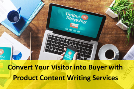 Convert Your Visitor into Buyer with Product Content Writing Services Infographic