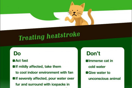 Cool Cats and Hot Dogs- A guide to Pet Health Infographic