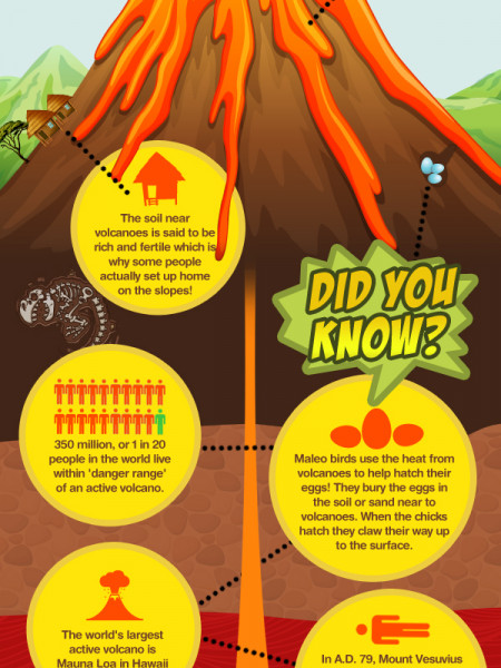 Cool Volcano Infographic
