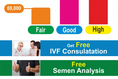 Cost of IVF Treatment in India Infographic