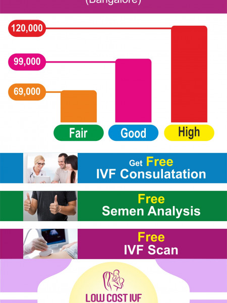 IVF Cost | What is the IVF Treatment Cost in India 2019? IVF Treatment in Bangalore Infographic