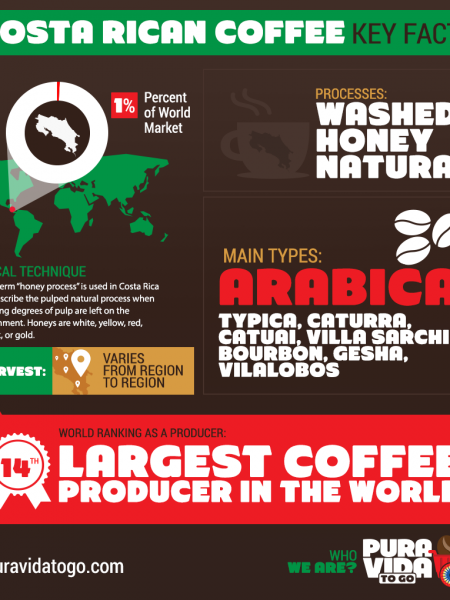 Costa Rican Coffee Key Facts Infographic