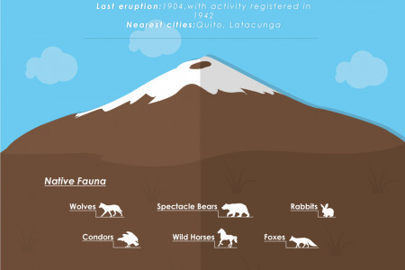 Cotopaxi National Park Infographic