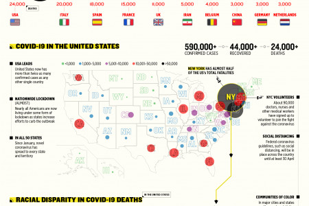 COVID-19: The Numbers Behind The Virus Infographic