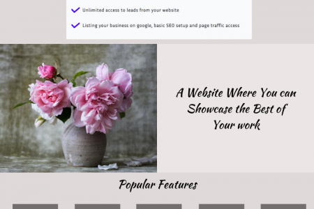 Create a Stunning Portfolio Website Within Minutes Infographic