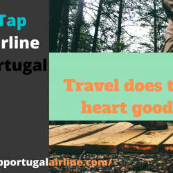 create some wonderful travel stories with Tap Portugal Airline | Visual.ly