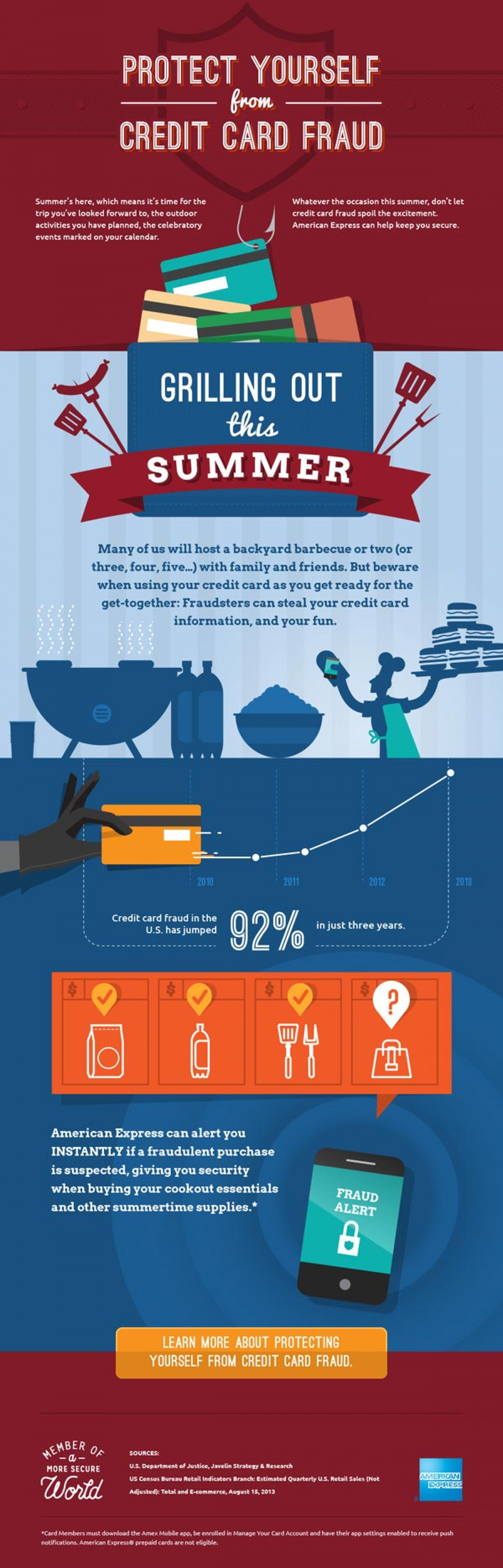 Credit Card Fraud: Grilling | Visual.ly