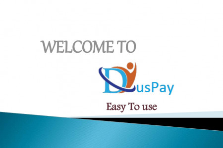 Credit Card Processing - Duspay Infographic