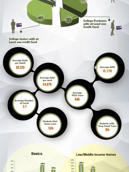 Credit Card Statistics Infographic