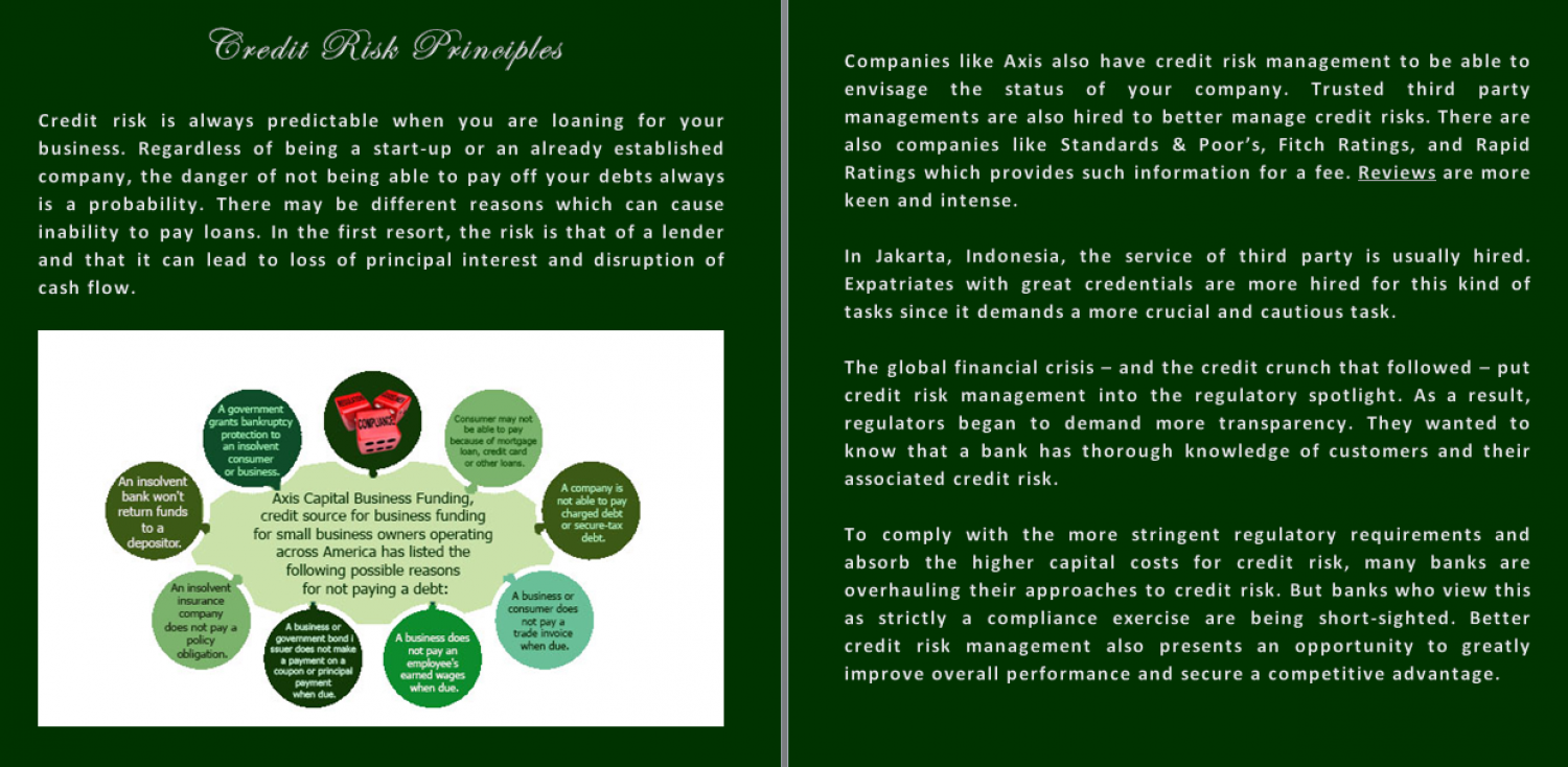 Credit Risk Principles Infographic