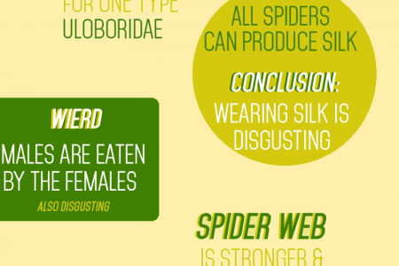 Creepy Crawlies Infographic
