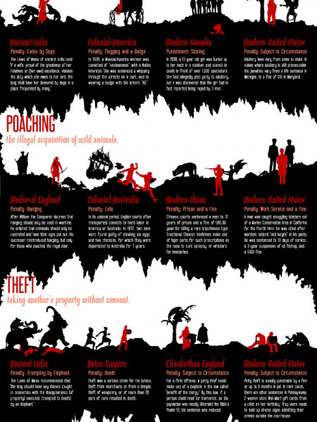 Crimes Through Time and the Punishments that Came with them Infographic