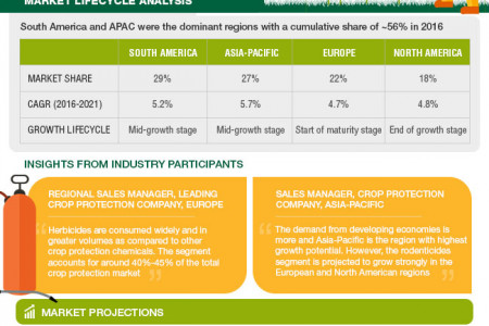 Crop Protection Market Infographic
