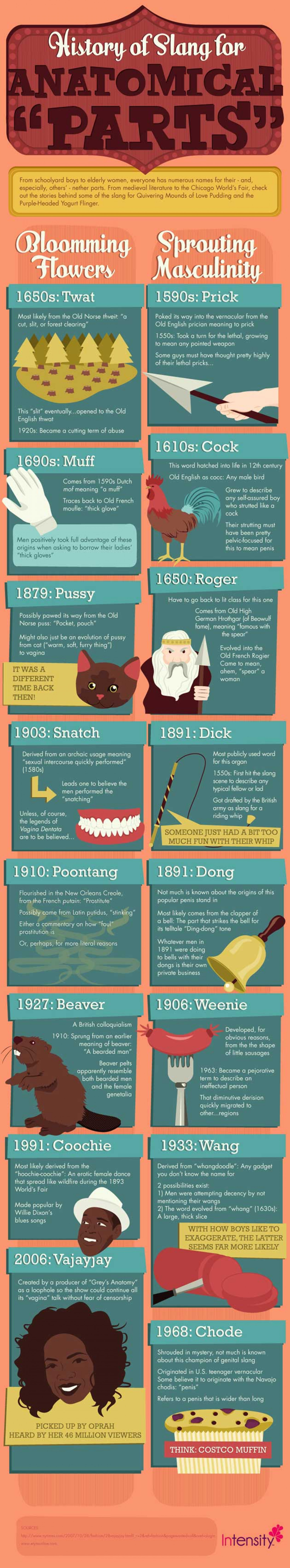Crotch Shots: The Definitive Guide to Anatomical Slang  Infographic