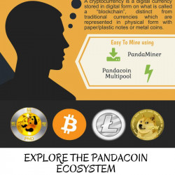 What is cryptocurrency infographic