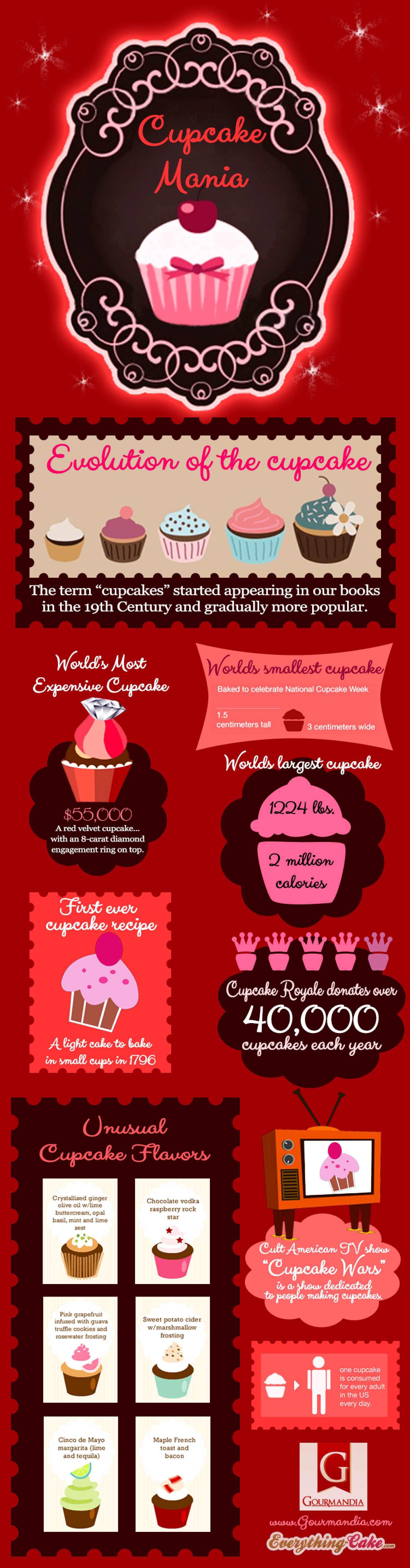 Cupcake Mania Infographic