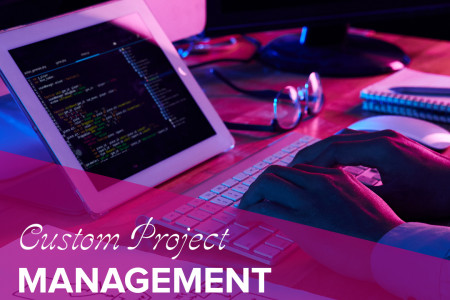 Custom Project Management Software | System Development - QuickStart Admin Infographic