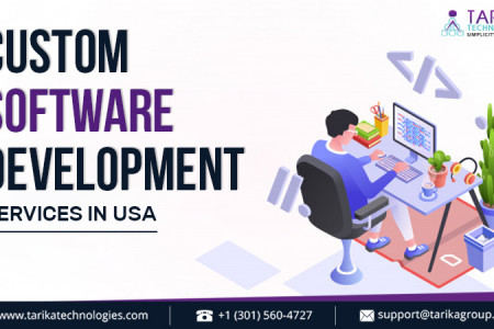 Custom Software Development Services in the USA Infographic