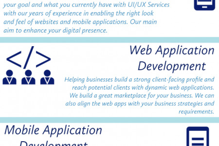 Custom Software Development Services Infographic