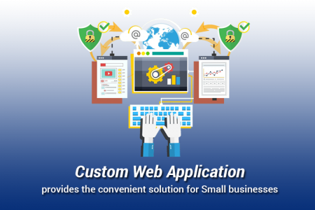 Custom Web Application Development Infographic