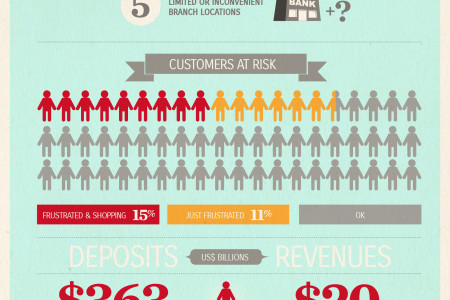 Customer Frustrations with Banks Infographic