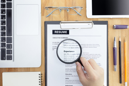 CV Writing Service for job seeking experienced professionals Infographic