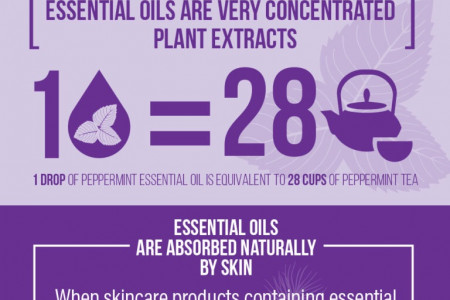 DA Aromatherapy Collection Infographic about Organic Essential Oils Infographic