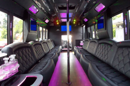 Dallas Party Buses Infographic