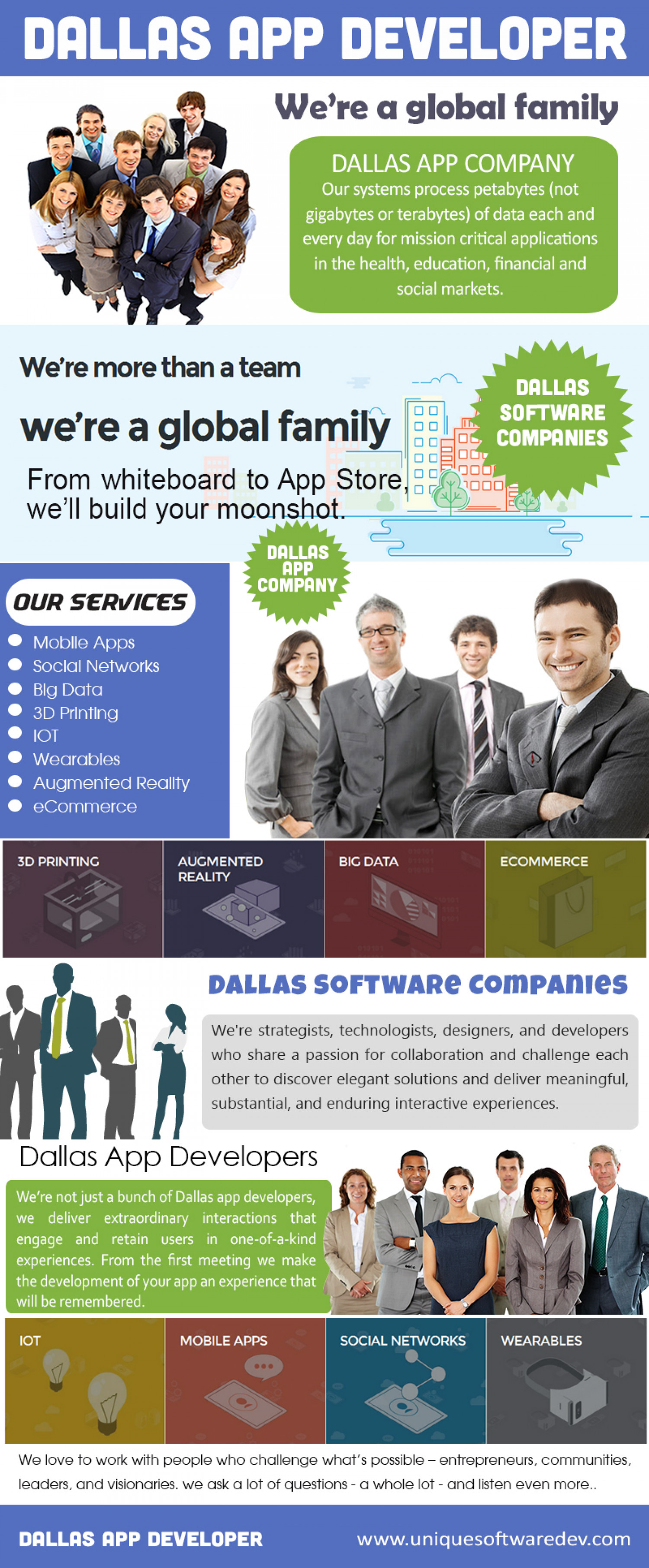 Dallas Software Companies Infographic