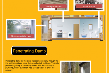 Damp Proofing: A Quick Information Guide Infographic