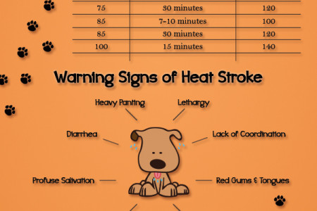 Dangers of Leaving Pets in Hot Cars Infographic