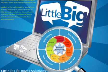 Data and Information Management in Richmond, VA Infographic