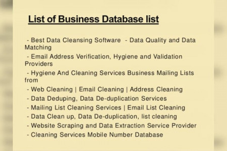 Data Cleaning Services Infographic