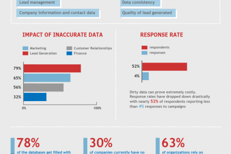 Data Cleansing Infographic