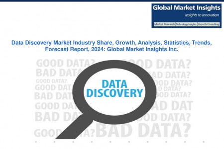 Data Discovery Market Analysis Report, Share, Growth, Trend, and Forecast, 2024 Infographic