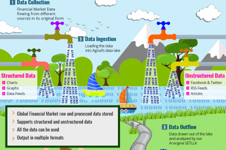 Data Lake Infographic Infographic