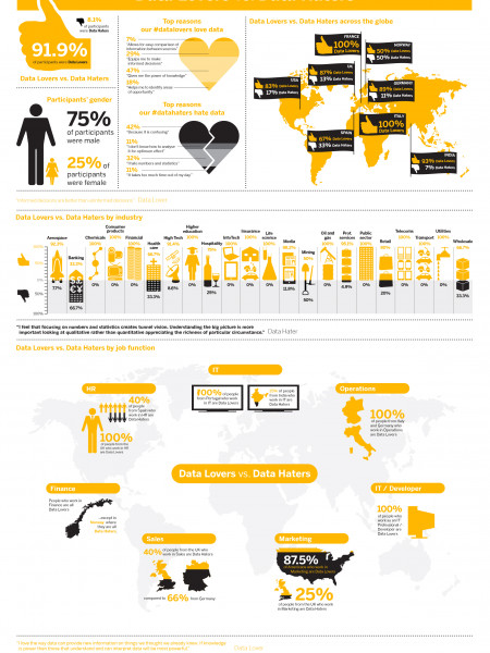 Data Lovers vs. Data Haters Infographic