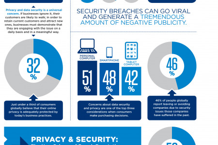 Data Security & Privacy Global Insights Infographic