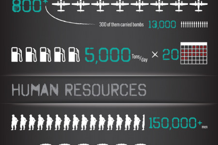 D-Day in Numbers Infographic