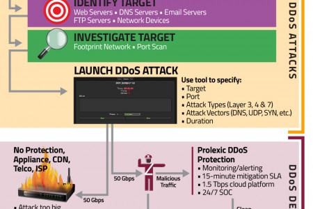 DDoS Attacks & DDoS Defense Infographic