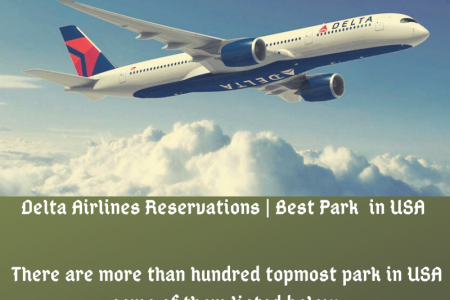Delta Airlines Reservations and tickets cancellations  Infographic